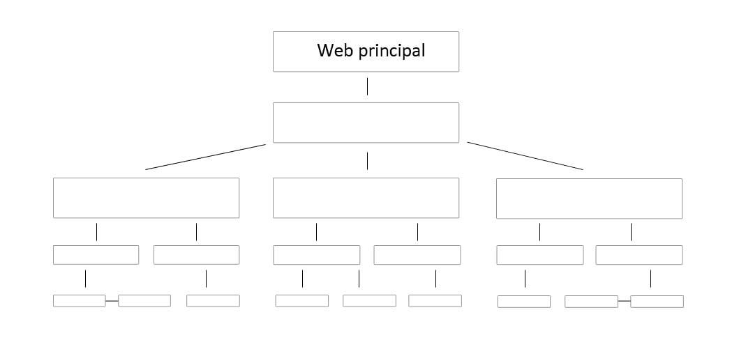 estructura-pbn increnta